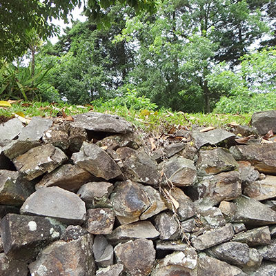verde-martinato-reserva-ecologica-pedras