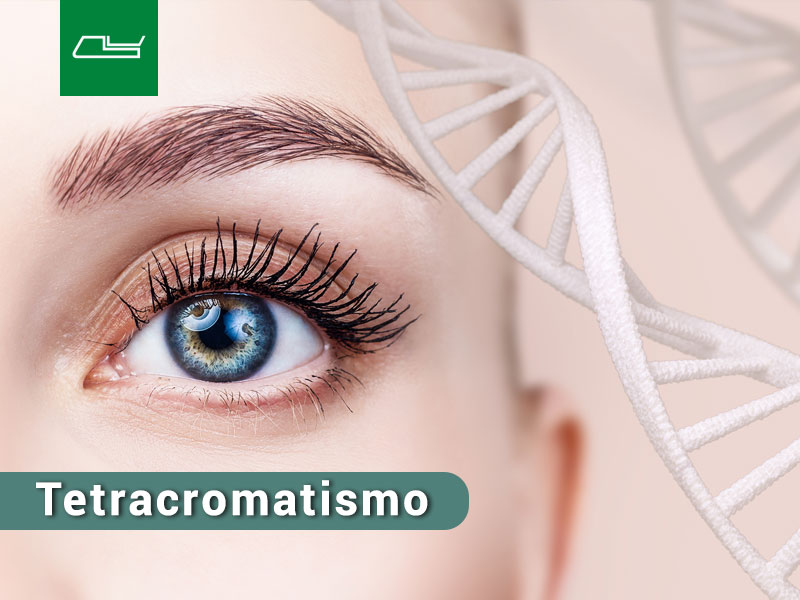 Read more about the article Tetracromatismo